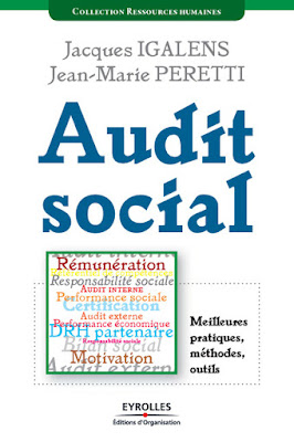 Audit social PDF