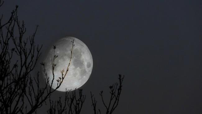 Playlist febrero: Bailando con la luna