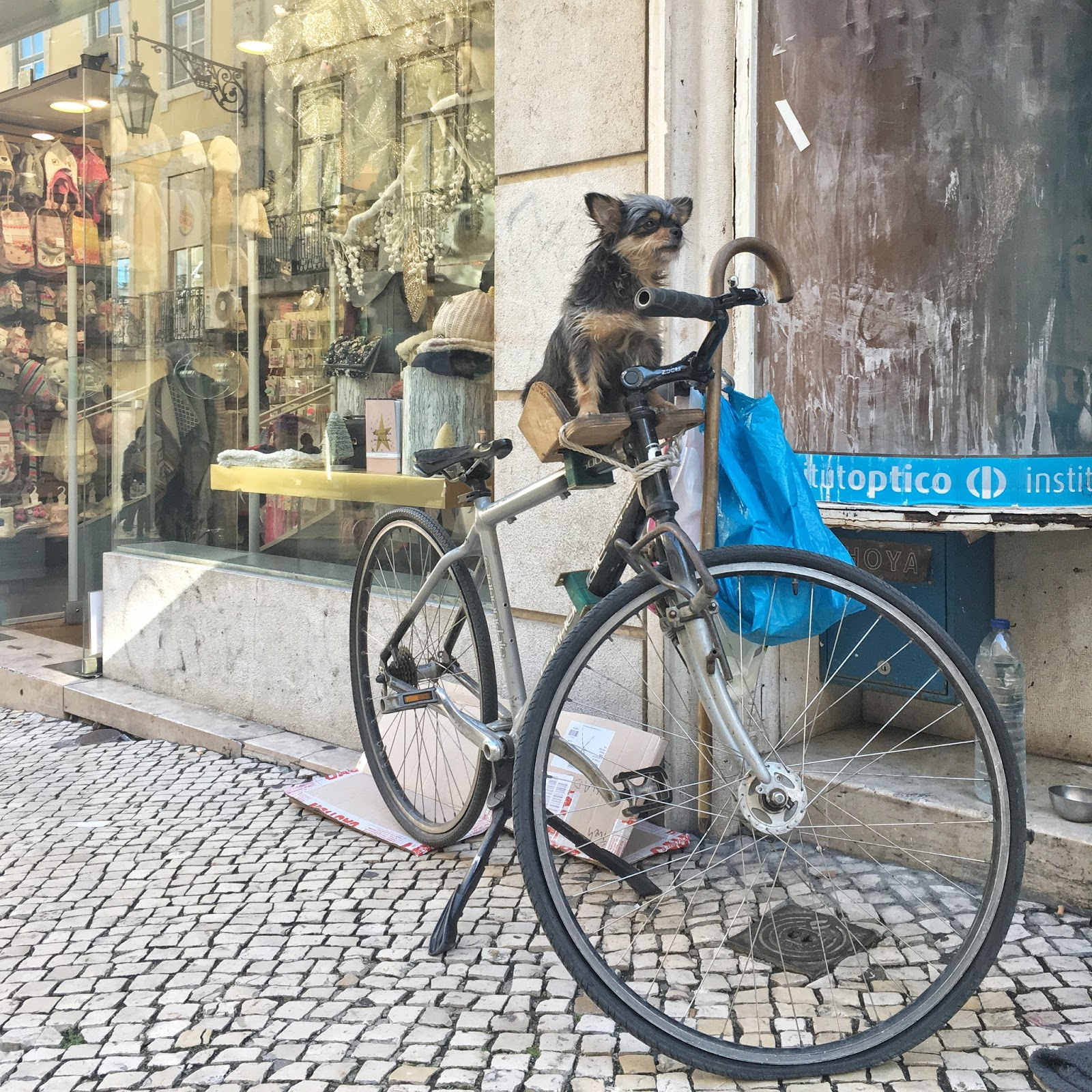 Lisabon, Portugalsko, tipy na život