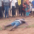 Man identified as Ogijo was Murdered In Kogi With His Hands Tied (Photos)