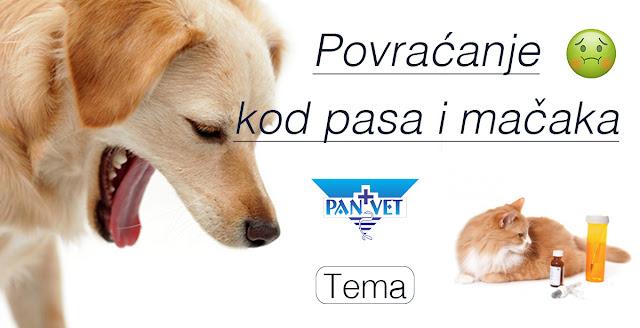 Povraćanje kod pasa i mačaka - Panvet Subotica