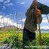 Petani Batur Antara Gunung dan Danau : The Batur Land in Bali