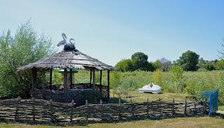 Село Золотой Колодезь. Источник целебной воды