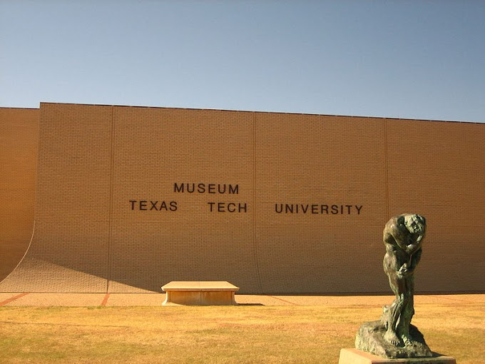 Texas Tech biology faculty speak out on sexist remarks caught on video