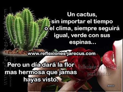 Un hombre pregunto a un sabio si debía quedarse con su esposa o su amante. el sabio tomo una rosa en una mano y en su otra mano un  cactus.y le pregunto al hombre:   Si yo te doy a escoger una de las dos, ¿Cual eliges?.