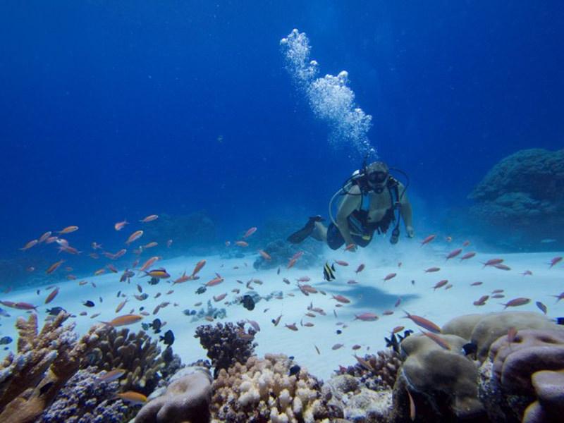 Buceo Isla Kosrae