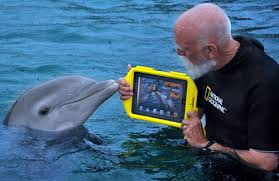 Dolphin with iPad