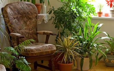 Sua casa tem uma energia positiva ou negativa?