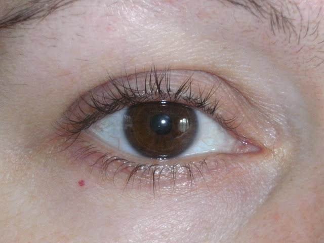 Pleasureflush: Where Did My Eyelashes Go, RapidLash?