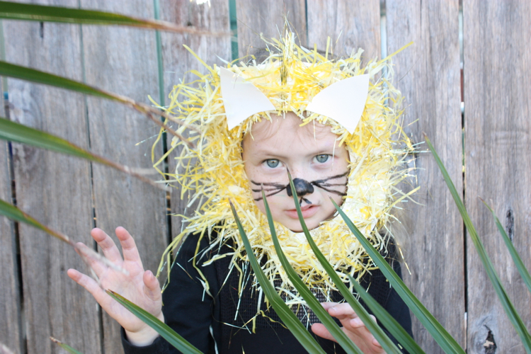 Kids craft DIY paper plate lion mask & The Happy Home: Kids craft DIY: paper plate lion mask