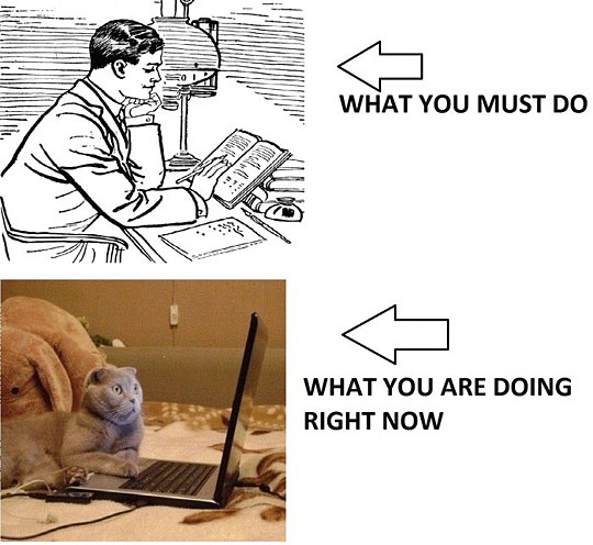 what you must do vs. what youre doing