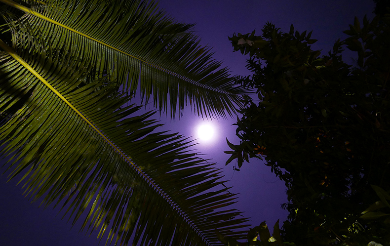 Euriental | fashion & luxury travel | Ubud, Bali, full moon