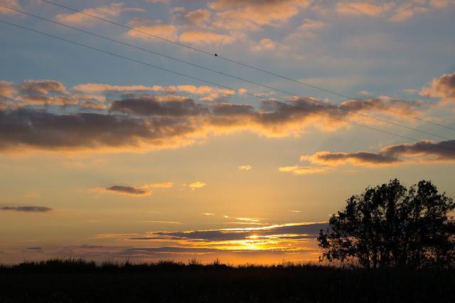 A sunset over a field