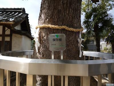 菅原天満宮保存樹