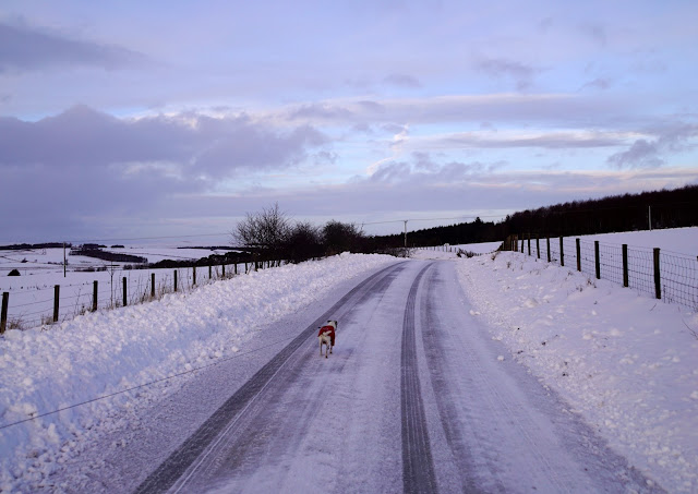 We ventured up the road towards the local village, it was hard going on the icy roads