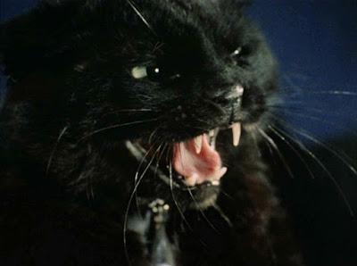 https://2.bp.blogspot.com/-tfaNrf14s0Q/WD7k9m_F1vI/AAAAAAAAByc/35klH3KTObguvCgvNPfsbo2bA3L5jAxfgCLcB/s400/Sylvia_as_black_cat.jpg