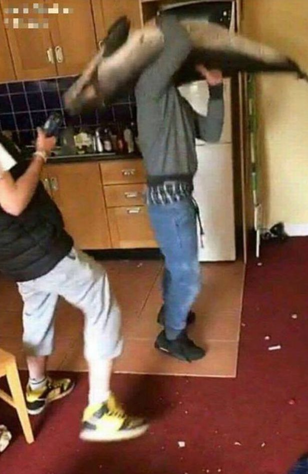 Horrific photos show party-goers dancing with dead dophin in student apartment