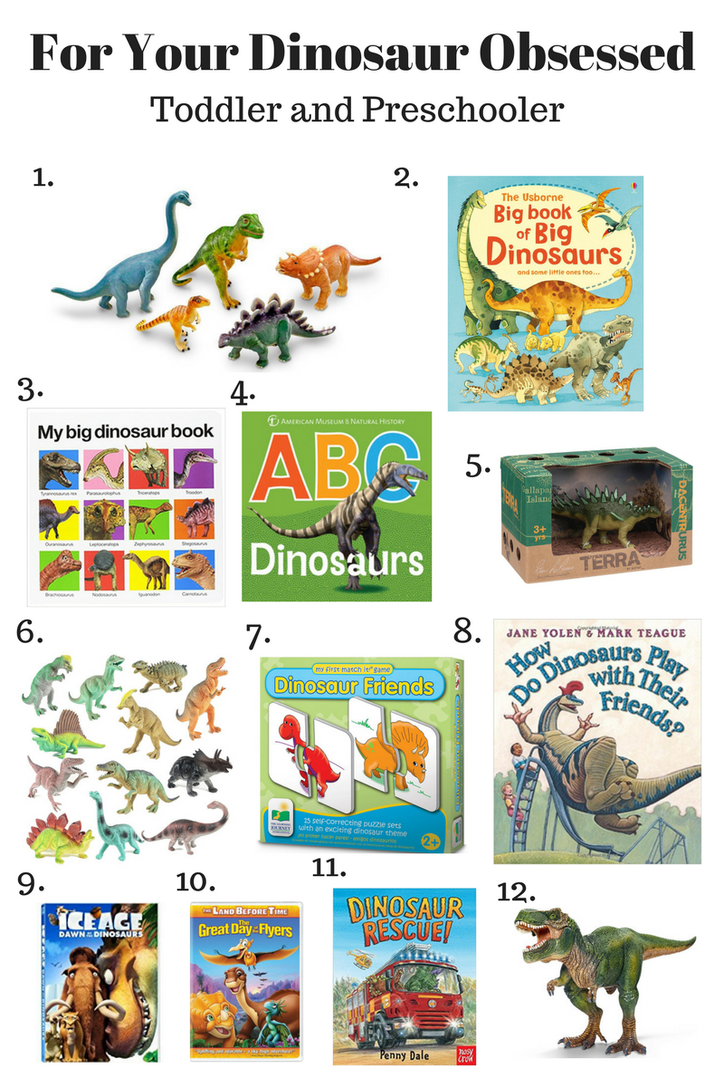 For Your Dinosaur Loving Toddler