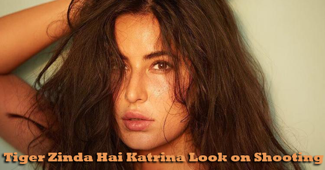 Tiger-Zinda-Hai-Actress-Katrina