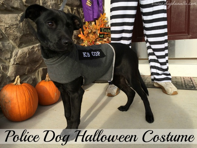 DIY Dog Halloween Costume: Police Dog