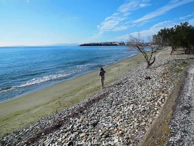 Plaża Tinos, Agia Foka