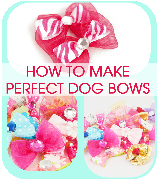Cold Hands Warm Heart Perfect Dog Bows Tip From A