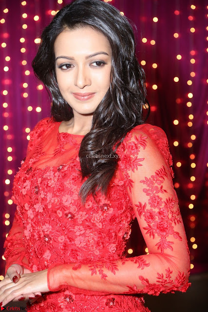 Catherine Tresa in red transparent gown at Zee Telugu Apsara Awards 2017 02.JPG