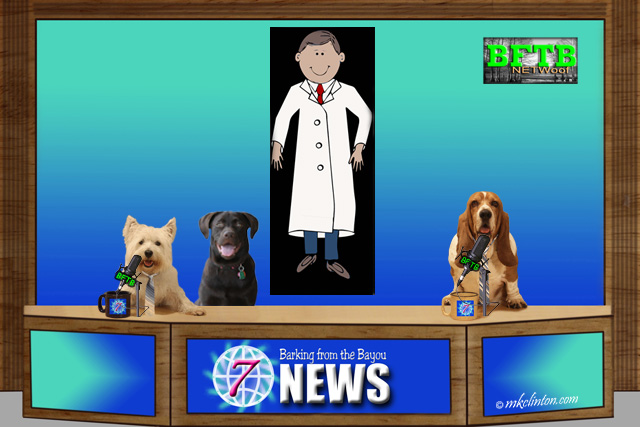 BFTB NETWoof Dog News with doctor on background screen