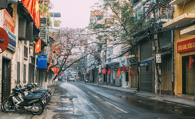 Peaceful beauty of Ha Noi during the holiday 3