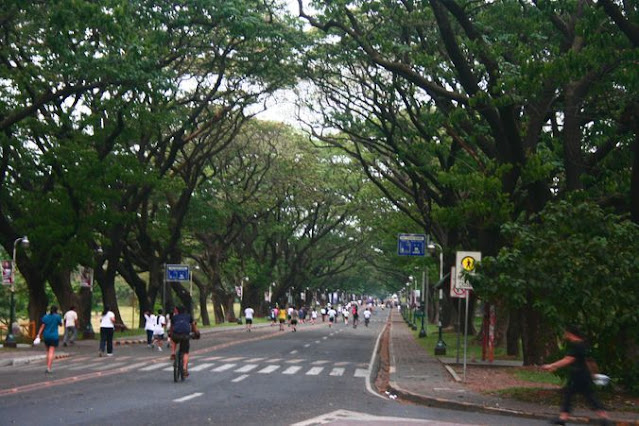 UP Diliman Academic Oval on a weekend