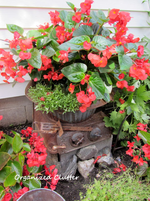 Red Begonias and Impatiens with rusty garden junk