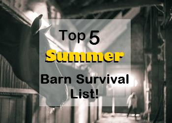 Top 5 Summer Barn Survival List