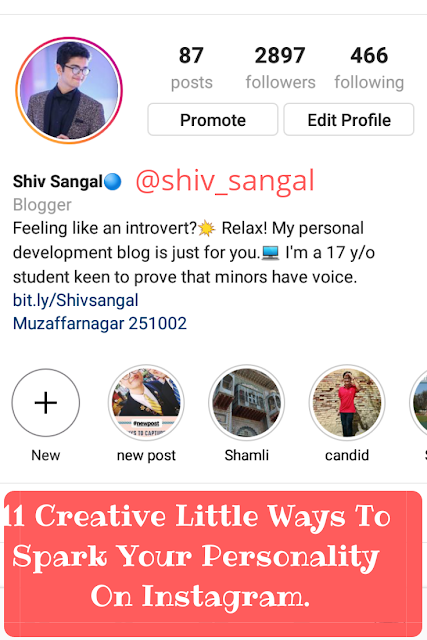 Shiv Sangal, blogging, instagram, personality.