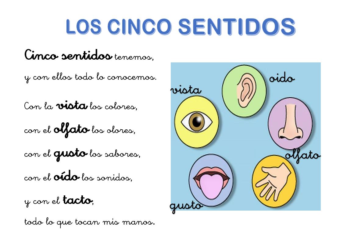Recursos para el aula de infantil poes a de los cinco for Mural de los 5 sentidos