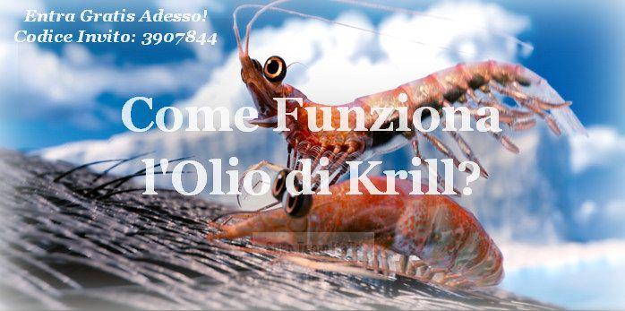 Olio di Krill Snep