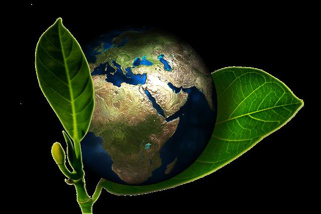 Seminario de Desarrollo Sustentable tejeredes