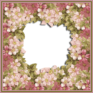 NM_FRAME_28-01-19     -     FREEBIE