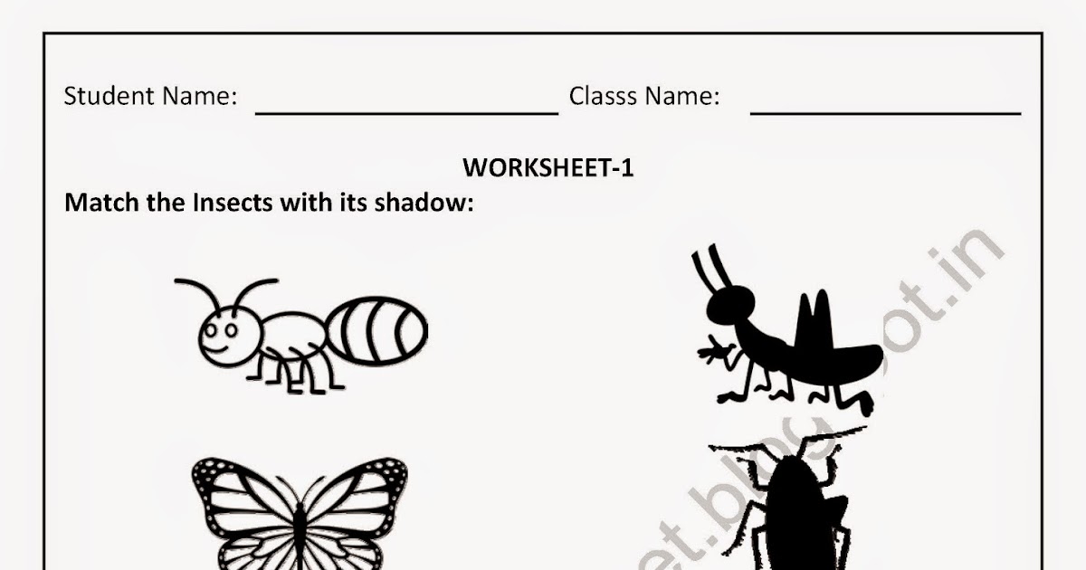 PDF free download worksheet for nursery kids (Match the Insects with ...