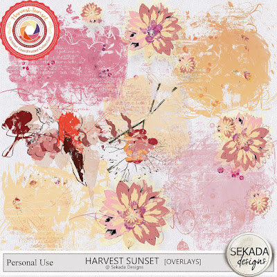 https://www.digitalscrapbookingstudio.com/digital-art/element-packs/harvest-sunset-overlays/