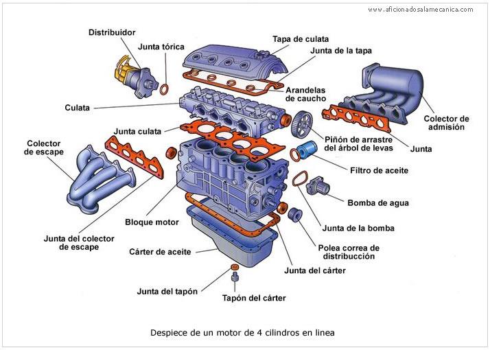 Los mecanicos al servico de la comunidad motores de for Las partes de un arbol en ingles