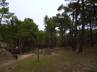 Desvío hacia el Arroyo del Vado