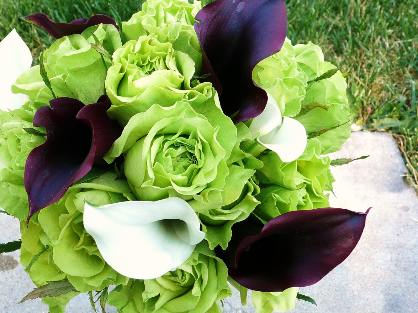 Allinallwalls : Most Beautiful Green Roses In The World