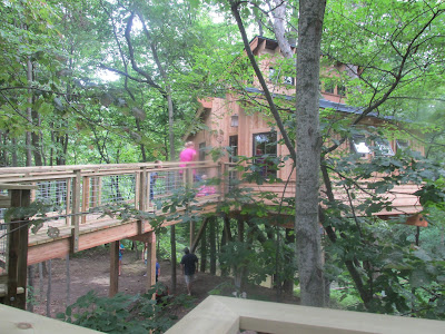 Tree house in Nature preserve