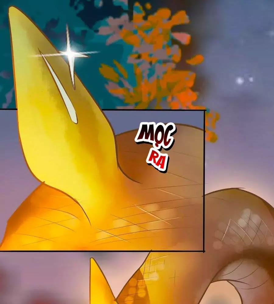 Thần Y Khí Nữ: Ngự Thú Cuồng Phi Của Quỷ Đế Chapter 69 - Trang 71