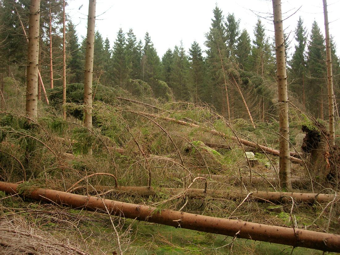 Danni per la tempesta del 2012