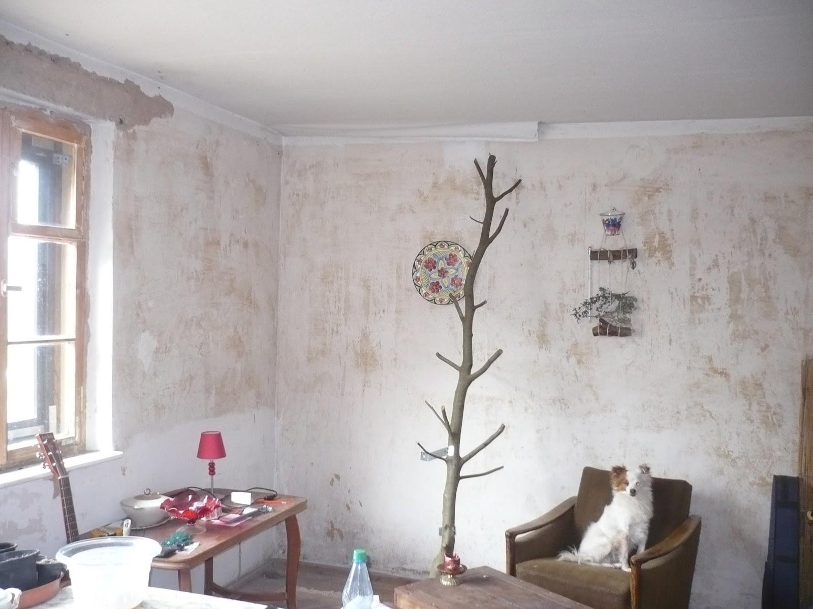 karl erwin und die frau ein haus wird gl cklich k chen und wohnzimmerdecke. Black Bedroom Furniture Sets. Home Design Ideas