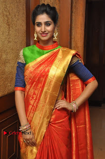South Indian Celebrities Pos at Love For Handloom Collection Fashion Show  0007.jpg