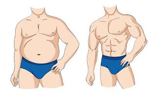انقاص الوزن وبناء العضلات