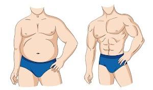 كيف تتم معادلة انقاص الوزن وبناء العضلات