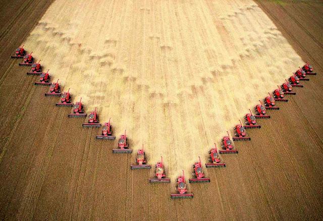 A produção de grãos do Brasil é superior a uma tonelada por habitante.